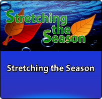 stretching-the-season-button